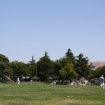 Even as an Unpopular Sport, Cricket Takes Off In The Bay