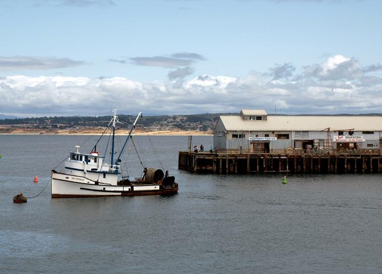 Chinese immigration influences fishing in monterey the for Monterey fishing trips