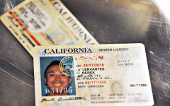 Undocumented immigrants eligible for driver's licenses by 2015
