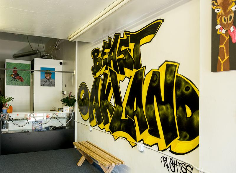 Oakland+designer+unleashes+beast