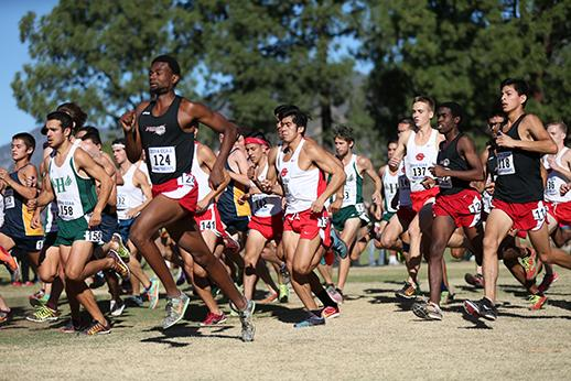 Cross Country pic 1