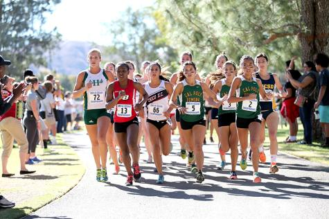 Cross-country season comes to an end