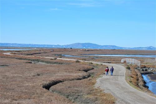 Trash Takers protect Hayward's shoreline