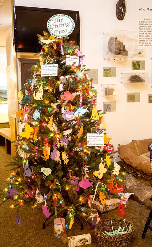 El árbol que aparece en el interior del centro.