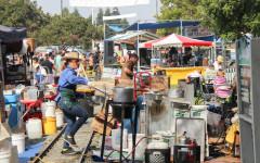 Hayward celebrates 33rd Zucchini Festival