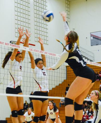 Wildcats claw in straight sets