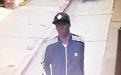 """""""Person of interest"""" sought in homicide of East Bay muralist"""