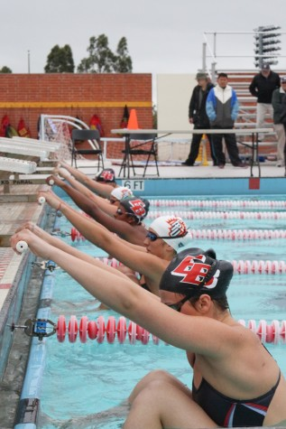 Swimmers find stroke in final home meet
