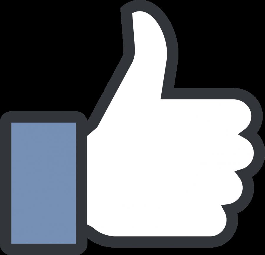 %E2%80%98Diverse%E2%80%99+enough+to+work+at+Facebook%3F