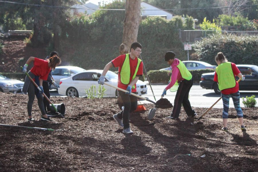 CSUEB makes a difference in community