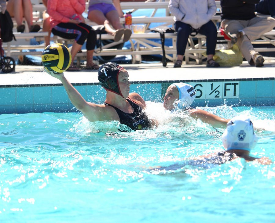 Water+polo+falls+to+conference+rivals