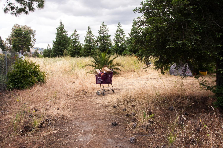 Homelessness+plagues+San+Jose