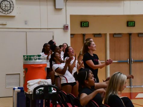 Volleyball bounces back, sinks Otters