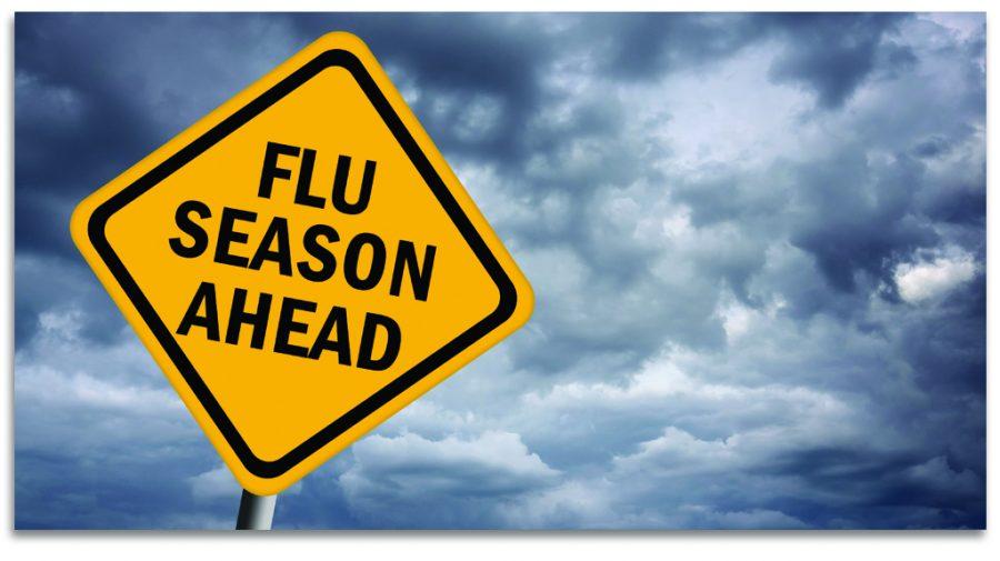 Flu epidemic among the United States