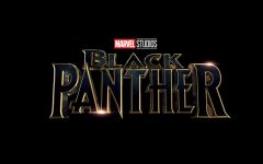 'Black Panther' surpasses the hype