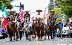 Annual Cinco de Mayo festival celebrates culture