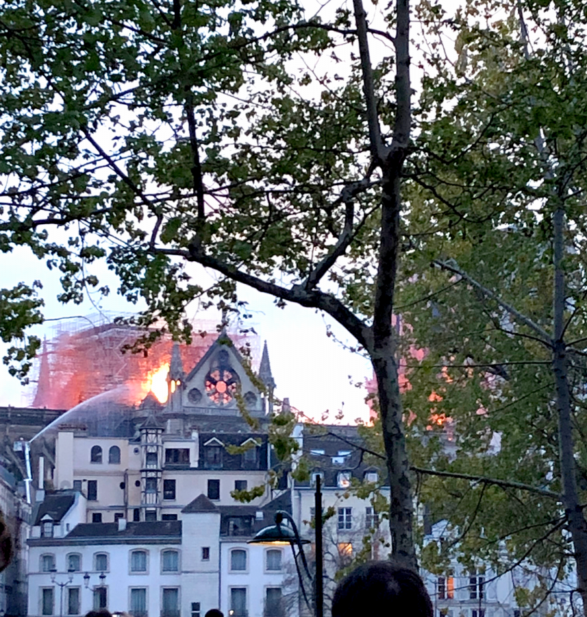Donations+to+rebuild+Notre+Dame+sparks+controversy
