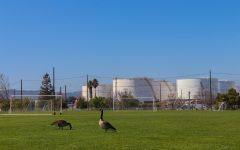 San Francisco Bay Area residents coexisting with major oil refineries