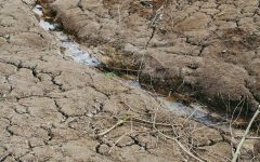 California's Historic $5.1B Drought