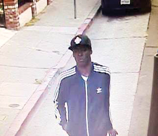 """Person of interest"" sought in homicide of East Bay muralist"
