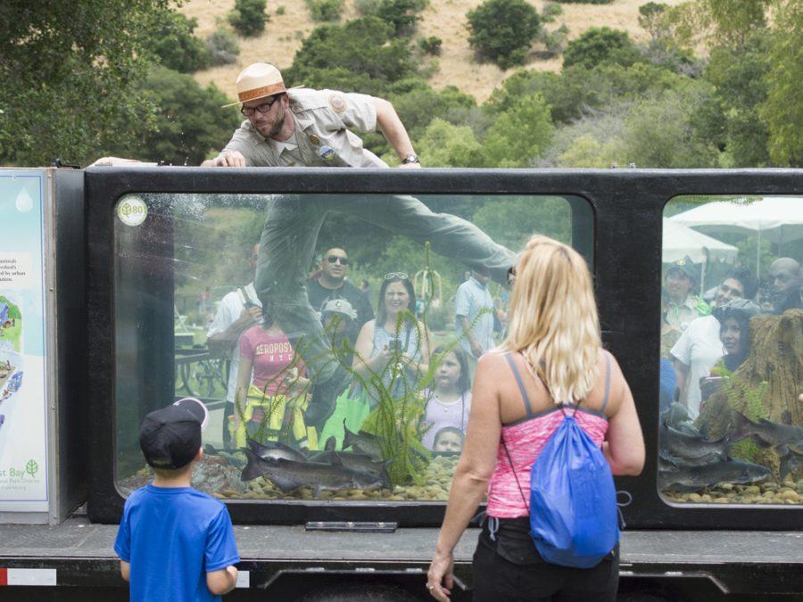 Castro Valley park celebrates 50 years
