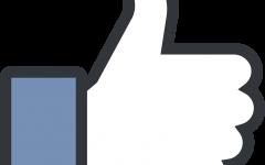 'Diverse' enough to work at Facebook?