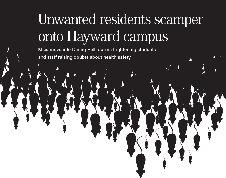 Unwanted residents scamper onto Hayward campus