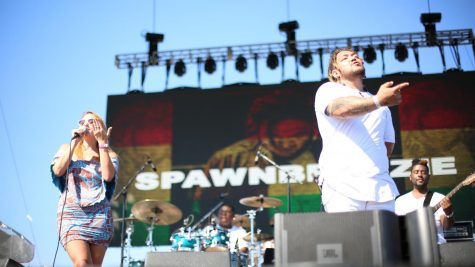 Island Reggae Festival displays culture in San Jose