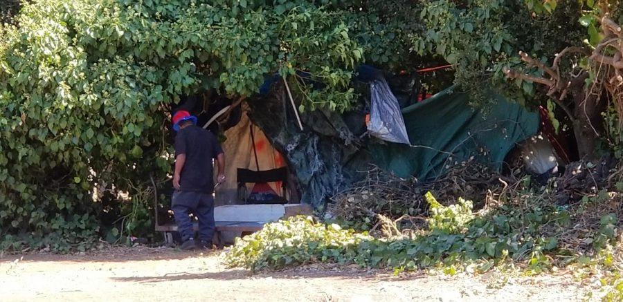 Homeless encampments populate Hayward