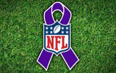 Domestic violence in the NFL needs to stop