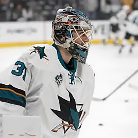 San Jose Sharks on a feeding frenzy