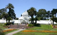 150 trees planted at Golden Gate Park for the 150th anniversary