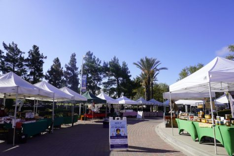 The setup of the outdoor farmer's market with CDC guidelines taking place.