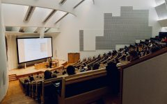 The Precarious Nature of Being a Lecturer in Post-Secondary Education